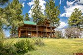 221 Regal Pines Court, Pagosa Springs, CO 81147