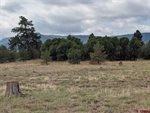 198 Greenway Drive, Pagosa Springs, CO 81147