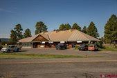 46 Eaton Drive, Pagosa Springs, CO 81147