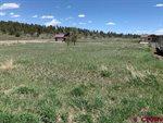 20 Lancer Ct, Pagosa Springs, CO 81147