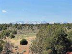 61601 Tres Coyotes Trail, Montrose, CO 81403