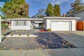 7333 Tulipwood Cir, Pleasanton, CA 94588
