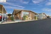 4603 Balfour, Brentwood, CA 94513